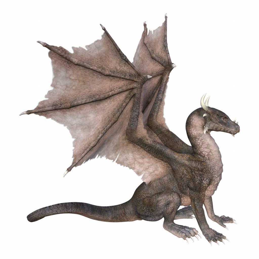 décoration dragons