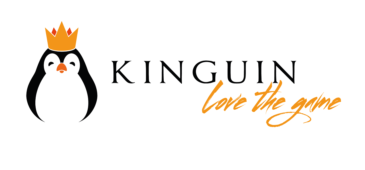 Logo Kinguin.net